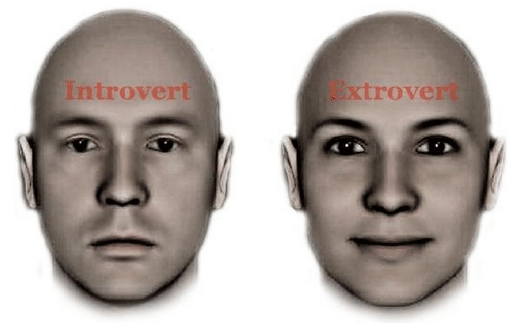 introvert, extrovert, ambivert?
