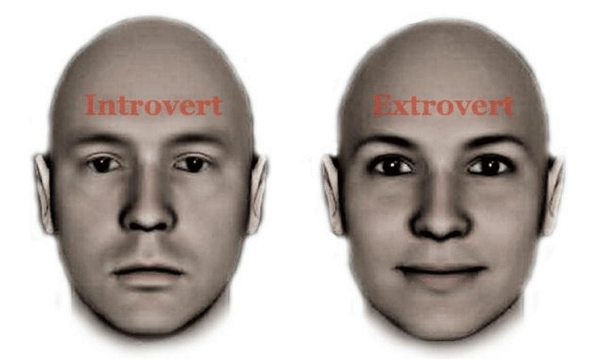extrovert advantage